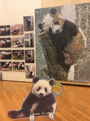 『大パンダ展』に行ってきました。