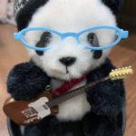 メガネとギターを購入しました